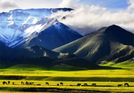 regiunea-Tuloi-studiul-China